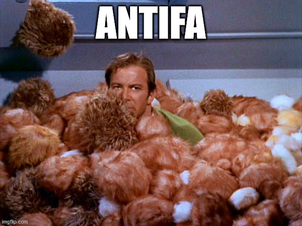 Tribbles are antifa |  ANTIFA | image tagged in kirk tribbles,antifa | made w/ Imgflip meme maker