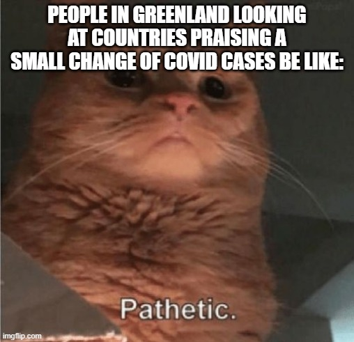 Mega Mind Size |  PEOPLE IN GREENLAND LOOKING AT COUNTRIES PRAISING A SMALL CHANGE OF COVID CASES BE LIKE: | image tagged in pathetic cat | made w/ Imgflip meme maker