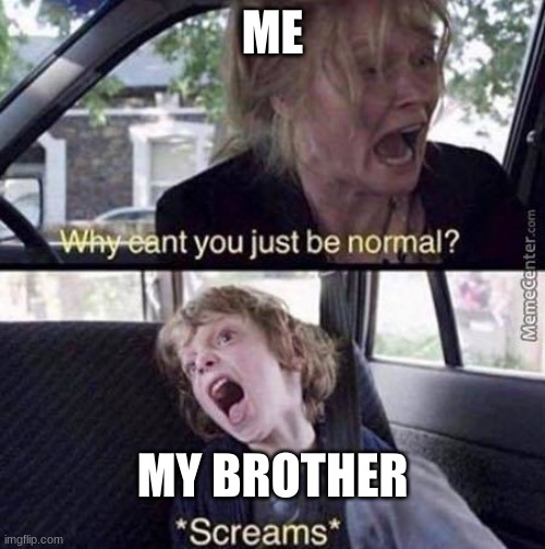 why can't you just be normal |  ME; MY BROTHER | image tagged in why can't you just be normal | made w/ Imgflip meme maker
