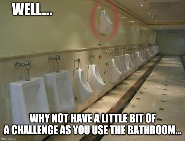 I have no words... |  WELL.... WHY NOT HAVE A LITTLE BIT OF A CHALLENGE AS YOU USE THE BATHROOM... | image tagged in fail,funny,memes,meme,funny memes | made w/ Imgflip meme maker
