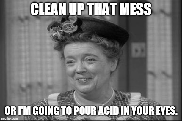 Aunt Bea |  CLEAN UP THAT MESS; OR I'M GOING TO POUR ACID IN YOUR EYES. | image tagged in aunt bea | made w/ Imgflip meme maker