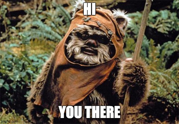 Ewok |  HI; YOU THERE | image tagged in ewok | made w/ Imgflip meme maker