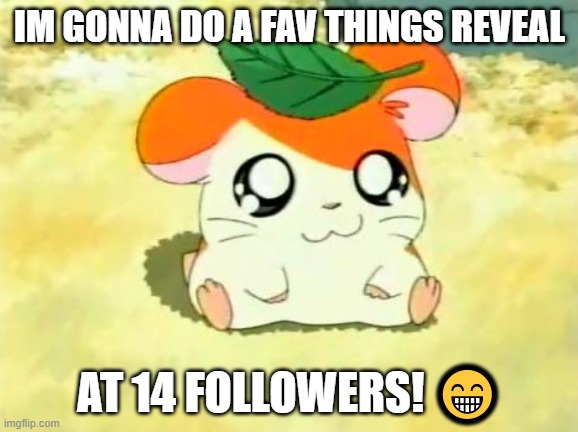 Hamtaro |  IM GONNA DO A FAV THINGS REVEAL; AT 14 FOLLOWERS! 😁 | image tagged in memes,hamtaro | made w/ Imgflip meme maker