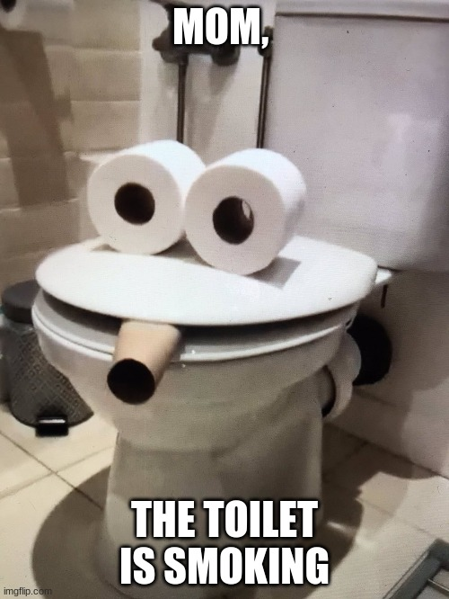 yOu HaVe BeEn PwAnKeD |  MOM, THE TOILET IS SMOKING | image tagged in prank,toilet humor | made w/ Imgflip meme maker