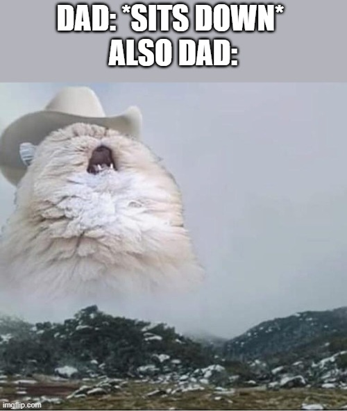 Country Roads Cat |  DAD: *SITS DOWN*  ALSO DAD: | image tagged in country roads cat | made w/ Imgflip meme maker