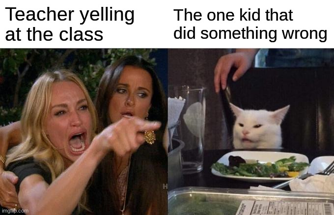 Woman Yelling At Cat |  Teacher yelling at the class; The one kid that did something wrong | image tagged in memes,woman yelling at cat | made w/ Imgflip meme maker