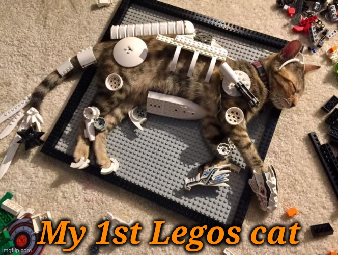 I Built My 1st Legos Cat |  My 1st Legos cat | image tagged in meme,legos,cat,is now built,you can build one to,or three | made w/ Imgflip meme maker