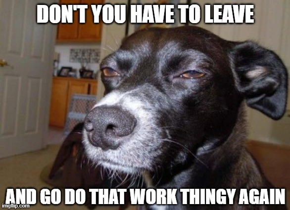 DON'T YOU HAVE TO LEAVE AND GO DO THAT WORK THINGY AGAIN | made w/ Imgflip meme maker