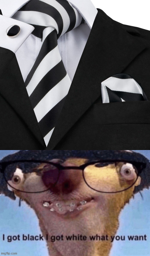 I dunno, just a tie | image tagged in i got black i got white what ya want,memes,tie,black and white | made w/ Imgflip meme maker