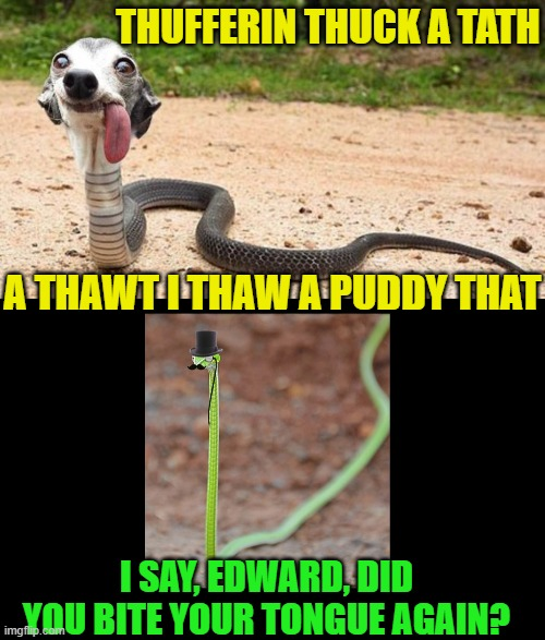 THUFFERIN THUCK A TATH A THAWT I THAW A PUDDY THAT I SAY, EDWARD, DID YOU BITE YOUR TONGUE AGAIN? | made w/ Imgflip meme maker