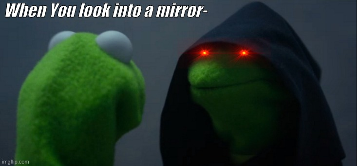 Kermit's Life |  When You look into a mirror- | image tagged in memes,evil kermit | made w/ Imgflip meme maker