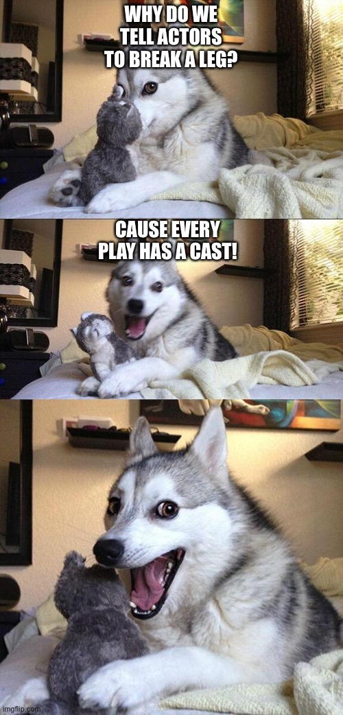 Play puns |  WHY DO WE TELL ACTORS TO BREAK A LEG? CAUSE EVERY PLAY HAS A CAST! | image tagged in husky | made w/ Imgflip meme maker