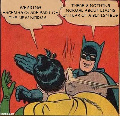 Facemasks and the 'New Normal' |  WEARING FACEMASKS ARE PART OF THE NEW NORMAL... THERE'S NOTHING NORMAL ABOUT LIVING IN FEAR OF A BENIGN BUG | image tagged in memes,batman slapping robin,covid-19,covid19,lockdown,public transport | made w/ Imgflip meme maker