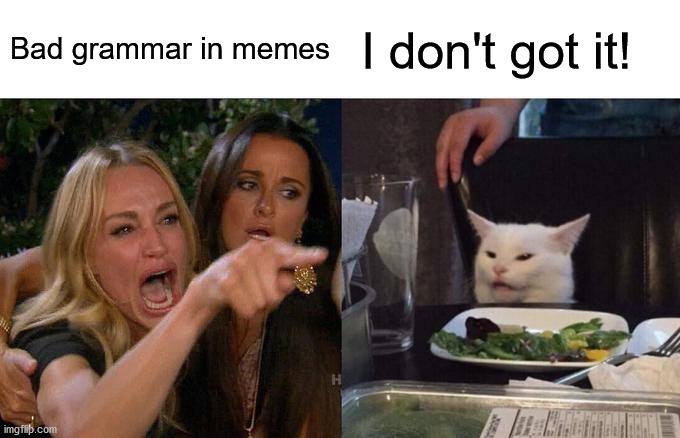 Bad grammar in memes |  Bad grammar in memes; I don't got it! | image tagged in memes,woman yelling at cat | made w/ Imgflip meme maker