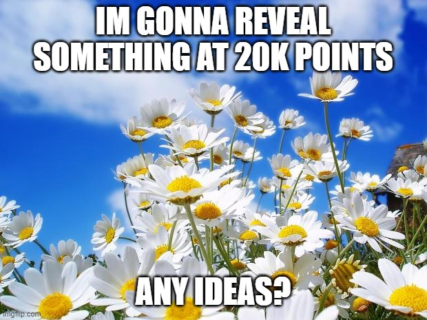 spring daisy flowers |  IM GONNA REVEAL SOMETHING AT 20K POINTS; ANY IDEAS? | image tagged in spring daisy flowers | made w/ Imgflip meme maker