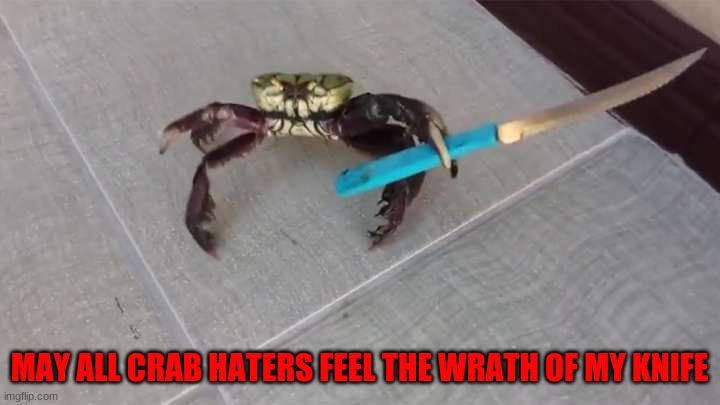 Crab haters BEWARE |  MAY ALL CRAB HATERS FEEL THE WRATH OF MY KNIFE | image tagged in crab knife | made w/ Imgflip meme maker