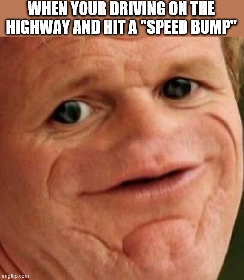 "SOSIG |  WHEN YOUR DRIVING ON THE HIGHWAY AND HIT A ""SPEED BUMP"" 