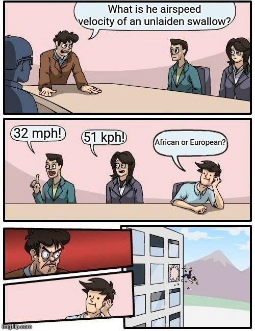 Boardroom Meeting Suggestion |  What is he airspeed velocity of an unlaiden swallow? 32 mph! 51 kph! African or European? | image tagged in memes,boardroom meeting suggestion | made w/ Imgflip meme maker