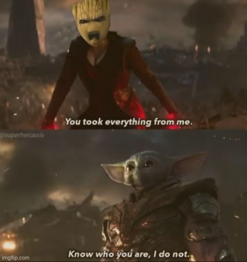 Rip Bebe Groot | image tagged in star wars,marvel,baby yoda,baby groot,avengers,rip | made w/ Imgflip meme maker