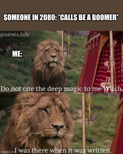 SOMEONE IN 2080: *CALLS BE A BOOMER*; ME: | image tagged in narnia meme | made w/ Imgflip meme maker