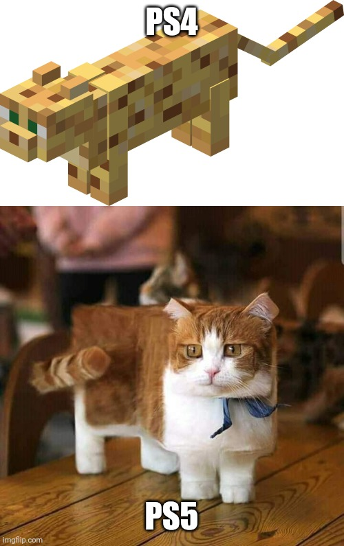 MINECRAFT ON PS5 WILL BE AWESOME |  PS4; PS5 | image tagged in memes,minecraft,cats,ps4,playstation | made w/ Imgflip meme maker