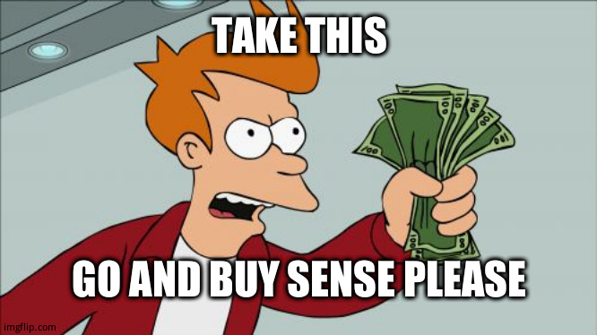 Shut Up And Take My Money Fry |  TAKE THIS; GO AND BUY SENSE PLEASE | image tagged in memes,shut up and take my money fry | made w/ Imgflip meme maker
