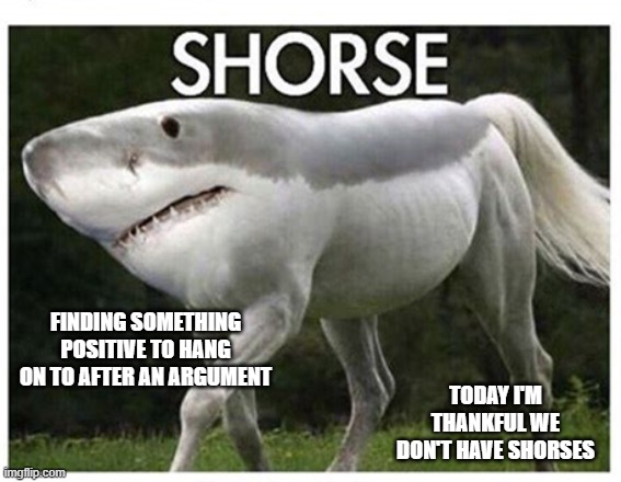 At least there are no shorses |  FINDING SOMETHING POSITIVE TO HANG ON TO AFTER AN ARGUMENT; TODAY I'M THANKFUL WE DON'T HAVE SHORSES | image tagged in positivity | made w/ Imgflip meme maker