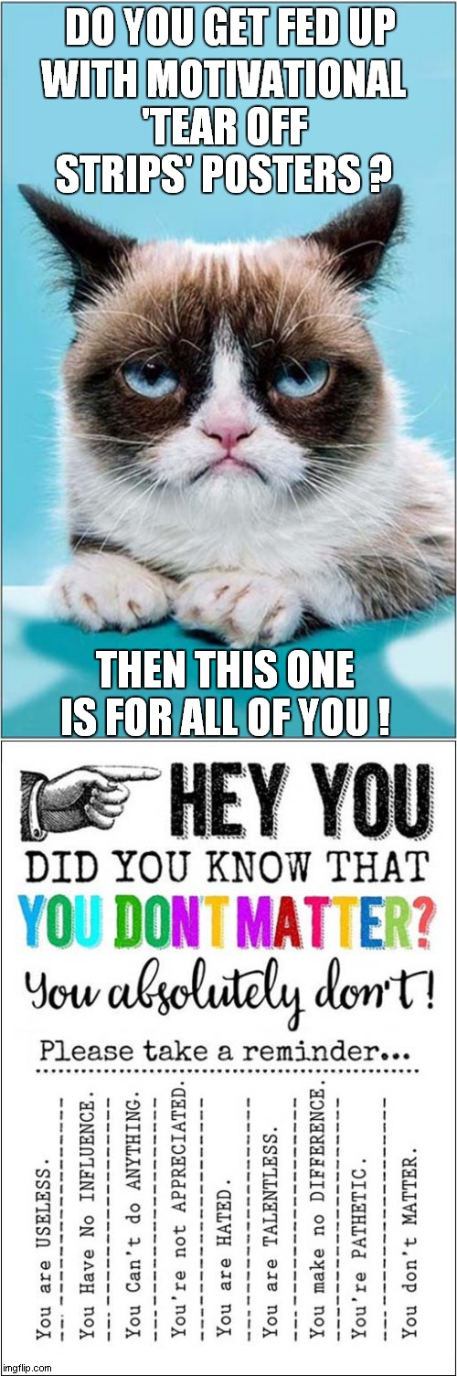 Grumpys Endorsement Of Poster |  DO YOU GET FED UP; WITH MOTIVATIONAL 'TEAR OFF STRIPS' POSTERS ? THEN THIS ONE IS FOR ALL OF YOU ! | image tagged in fun,grumpy cat,motivational,poster | made w/ Imgflip meme maker