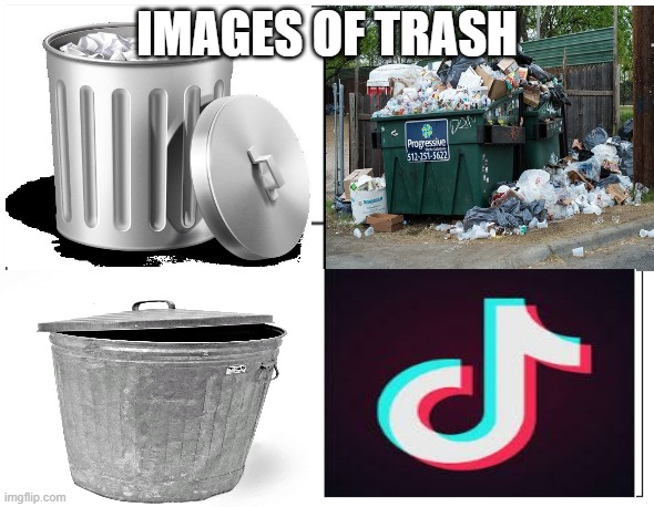 Help us take down tik tok |  IMAGES OF TRASH | image tagged in trash can full,trash,garbage,tik tok | made w/ Imgflip meme maker