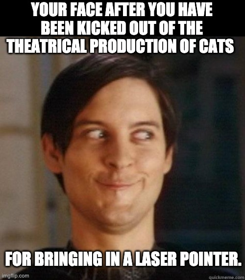 Cats |  YOUR FACE AFTER YOU HAVE BEEN KICKED OUT OF THE THEATRICAL PRODUCTION OF CATS; FOR BRINGING IN A LASER POINTER. | image tagged in evil smile | made w/ Imgflip meme maker