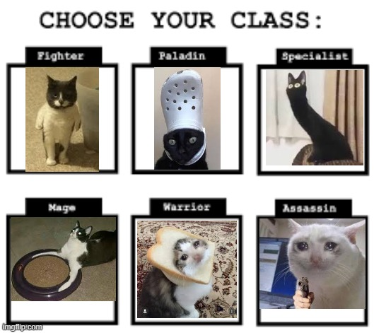 catclas | image tagged in cats,cursed,videogames | made w/ Imgflip meme maker