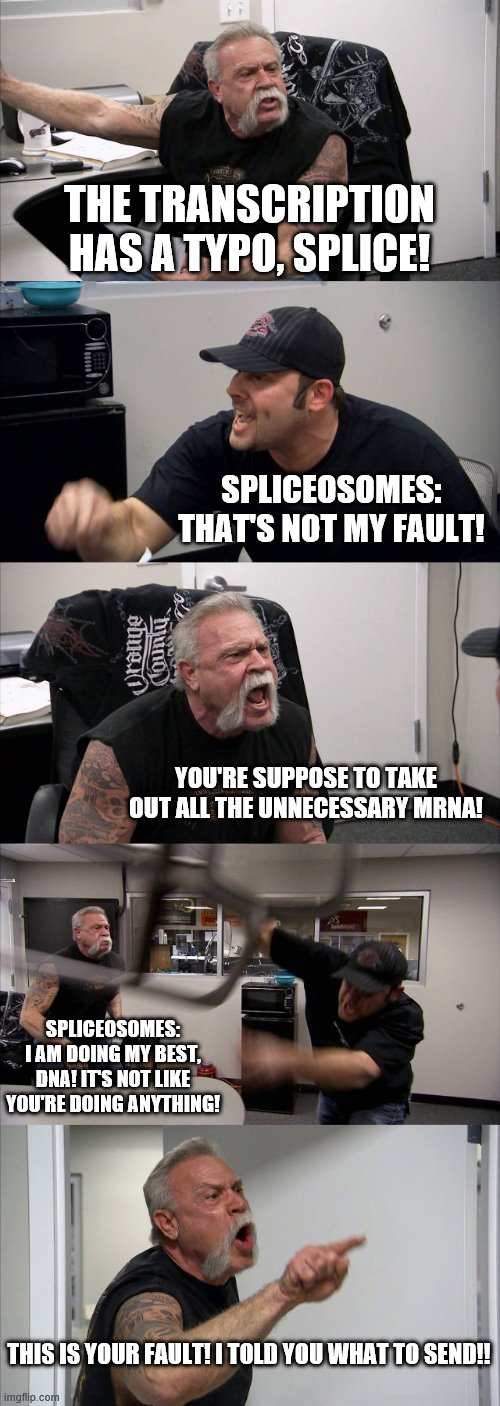 DNA and Spliceosomes Arguing |  THE TRANSCRIPTION HAS A TYPO, SPLICE! SPLICEOSOMES: THAT'S NOT MY FAULT! YOU'RE SUPPOSE TO TAKE OUT ALL THE UNNECESSARY MRNA! SPLICEOSOMES: I AM DOING MY BEST, DNA! IT'S NOT LIKE YOU'RE DOING ANYTHING! THIS IS YOUR FAULT! I TOLD YOU WHAT TO SEND!! | image tagged in memes,american chopper argument,funny,science,biology | made w/ Imgflip meme maker