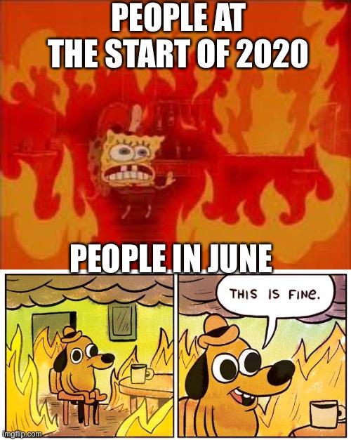 This Is Fine Meme This Is Fire Meme Comforter By Altohombre