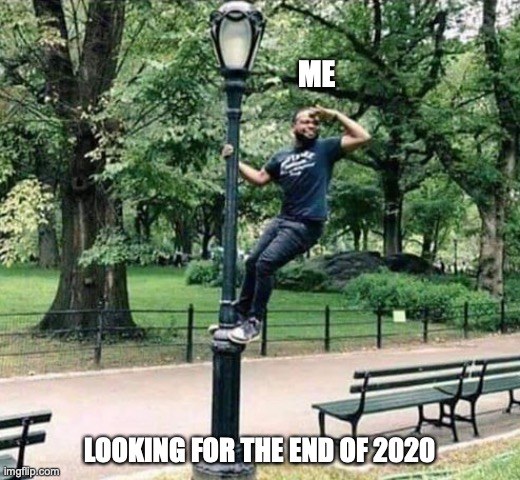 Looking for the end of 2020 |  ME; LOOKING FOR THE END OF 2020 | image tagged in looking | made w/ Imgflip meme maker