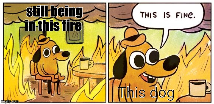This Is Fine Meme |  still being in this fire; This dog | image tagged in memes,this is fine | made w/ Imgflip meme maker