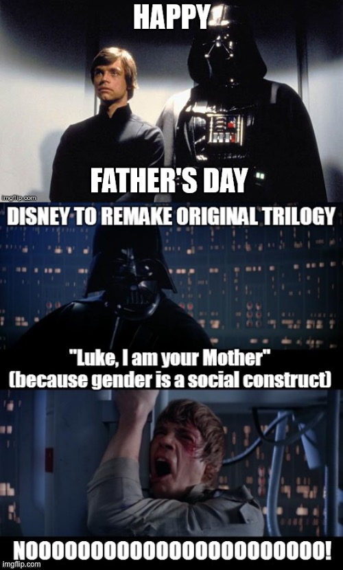 Father's Day | image tagged in fathers day,feminist,star wars,lgbtq,liberals | made w/ Imgflip meme maker