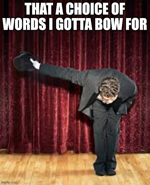 Take a bow. | THAT A CHOICE OF WORDS I GOTTA BOW FOR | image tagged in take a bow | made w/ Imgflip meme maker