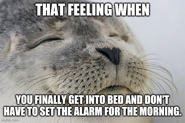 Satisfied Seal Meme |  THAT FEELING WHEN; YOU FINALLY GET INTO BED AND DON'T HAVE TO SET THE ALARM FOR THE MORNING. | image tagged in memes,satisfied seal | made w/ Imgflip meme maker