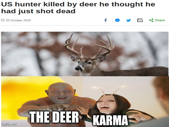 get nae naed |  THE DEER; KARMA | image tagged in funny,funny memes | made w/ Imgflip meme maker