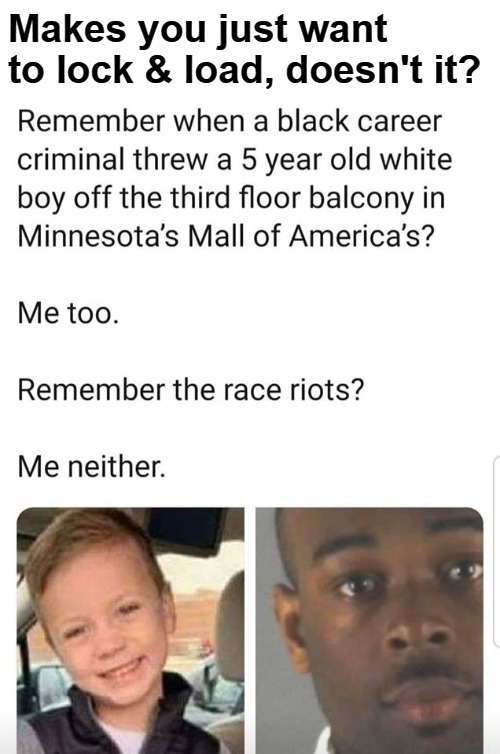 Remember when a black career criminal threw a 5 year old white boy off the third floor balcony in Minnesota's Mall of America? |  Makes you just want to lock & load, doesn't it? | image tagged in black racism,riots,minnesota riots,blm riots,lock and load,me too | made w/ Imgflip meme maker