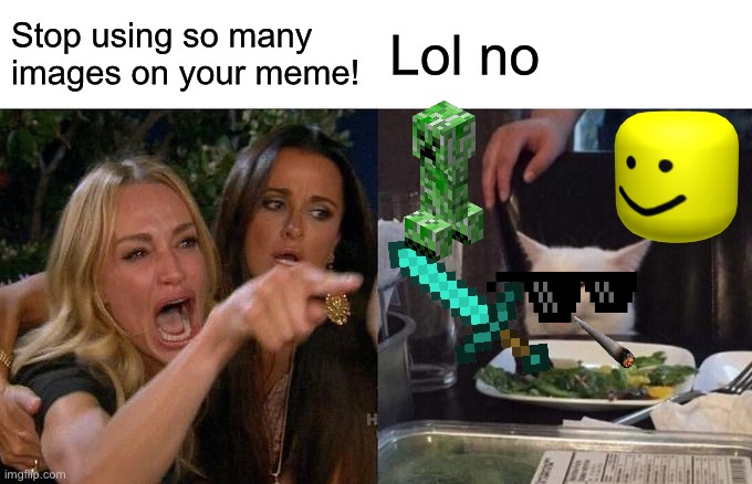 Me and the bois |  Stop using so many images on your meme! Lol no | image tagged in memes,woman yelling at cat | made w/ Imgflip meme maker