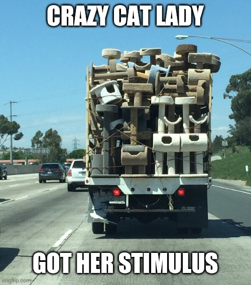 THAT'S JUST FOR HALF HER CATS |  CRAZY CAT LADY; GOT HER STIMULUS | image tagged in cats,funny cats,crazy cat lady | made w/ Imgflip meme maker