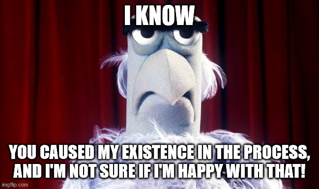 Sam the American Eagle | I KNOW YOU CAUSED MY EXISTENCE IN THE PROCESS, AND I'M NOT SURE IF I'M HAPPY WITH THAT! | image tagged in sam the american eagle | made w/ Imgflip meme maker