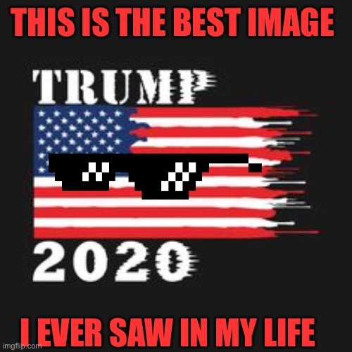 This is the best image ever!!!! |  THIS IS THE BEST IMAGE; I EVER SAW IN MY LIFE | image tagged in trump memes | made w/ Imgflip meme maker