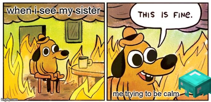 This Is Fine Meme |  when i see my sister; me trying to be calm | image tagged in memes,this is fine | made w/ Imgflip meme maker