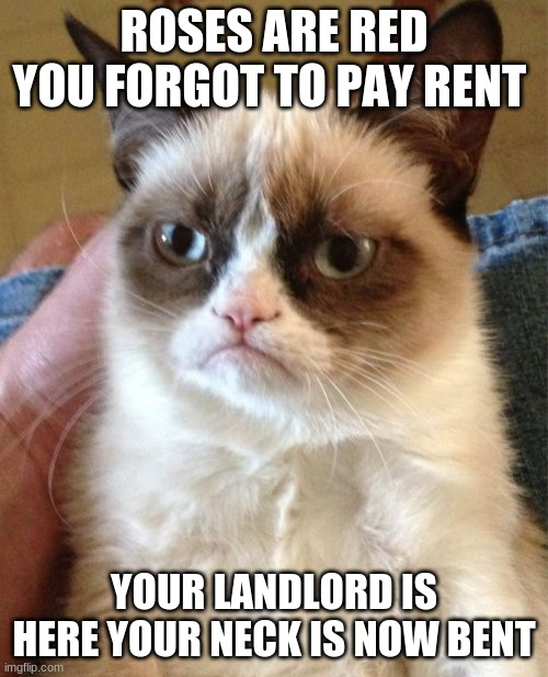 oh no the rent |  ROSES ARE RED YOU FORGOT TO PAY RENT; YOUR LANDLORD IS HERE YOUR NECK IS NOW BENT | image tagged in memes,grumpy cat | made w/ Imgflip meme maker