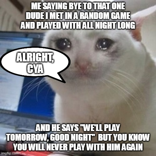 "happened to me once, never met him again :(( |  ME SAYING BYE TO THAT ONE DUDE I MET IN A RANDOM GAME AND PLAYED WITH ALL NIGHT LONG; ALRIGHT, CYA; AND HE SAYS ""WE'LL PLAY TOMORROW, GOOD NIGHT""  BUT YOU KNOW YOU WILL NEVER PLAY WITH HIM AGAIN 