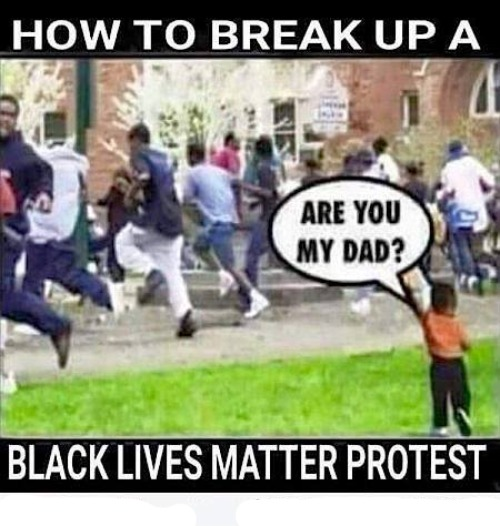 How to Break Up a Black Lives Matter Protest | image tagged in black lives matter,black lies matter,blm,riots,antifa,anarchy | made w/ Imgflip meme maker