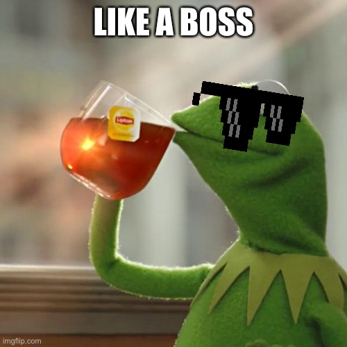But That's None Of My Business Meme | LIKE A BOSS | image tagged in memes,but that's none of my business,kermit the frog | made w/ Imgflip meme maker