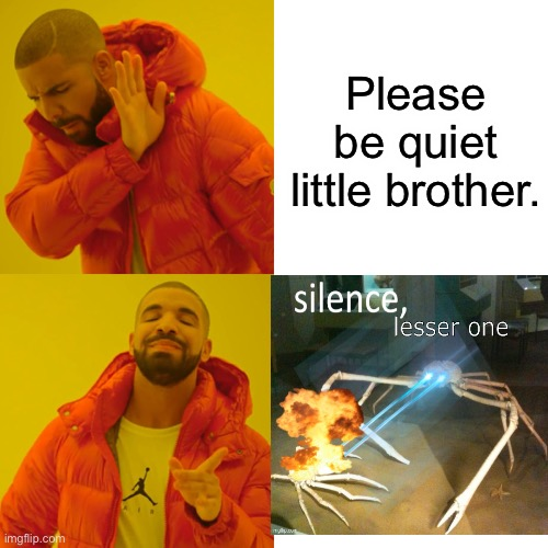 Because it makes sense (ignore the fact that this is in the repost stream it's not.) |  Please be quiet little brother. | image tagged in memes,drake hotline bling | made w/ Imgflip meme maker